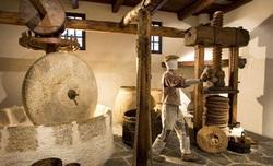 موزهای عجیب از میوهای بهشتی در ایتالیا+تصاویر