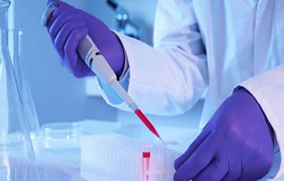قابلیت ترمیم بافت مفصلی با سلول بنیادی/ وقتی سلولهای بنیادین یاریرسان بیماران قلبی میشوند