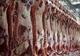 باشگاه خبرنگاران -معدوم سازی بیش از ۱۰۰ گوشت و آلایش خوراکی غیر قابل مصرف