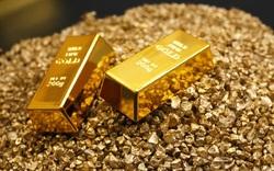 صرافیها سرگردان در نرخ ارزها/ قیمت سکه از مرز ۵ میلیون تومان گذشت