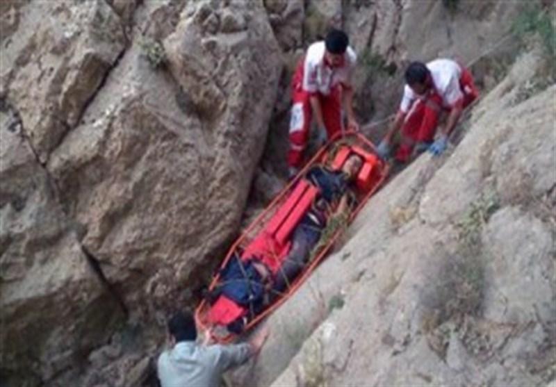 حمله گوزن به پارک بانها/ نجات ۵ کوهنورد گم شده /جولان کالا و اجناس مشابه خارجی در بازار صنایع دستی