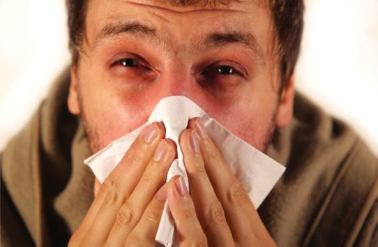 راهی برای فرار از سرماخوردگی در فصلهای سرد سال/ با این گیاه به جنگ با ۶ بیماری خطرناک بروید
