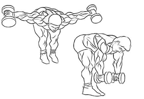 ورزشهای مناسب برای از بین بردن چربیهای زیربغل و کنار سینه+ تصاویر