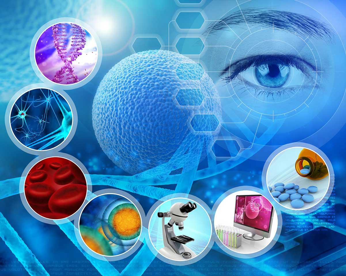 بارقههای امید برای درمان سرطان و ام اس با سلول درمانی/ گول تبلیغات فریبنده درمان همه بیماریها با سلول را نخورید/ محصولات دانش بنیانی که نوید بخش درمان سرطان و ام اس هستند/ بیماران قطع امید سرطانی با سلول درمانی جان دوباره میگیرند/ بارقههای امید برای درمان سرطان/ درمان ام اس با سلول زنده انسانی در راه است/ درمان ام اس با سلول درمانی در راه است