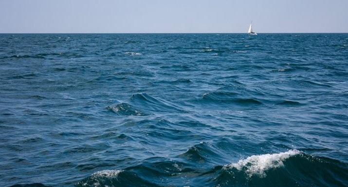 نجات نوزاد شناور در دریا