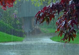 بارش باران همراه با رعد و برق در برخی مناطق کشور/ سواحل خوزستان و بوشهر مواج است