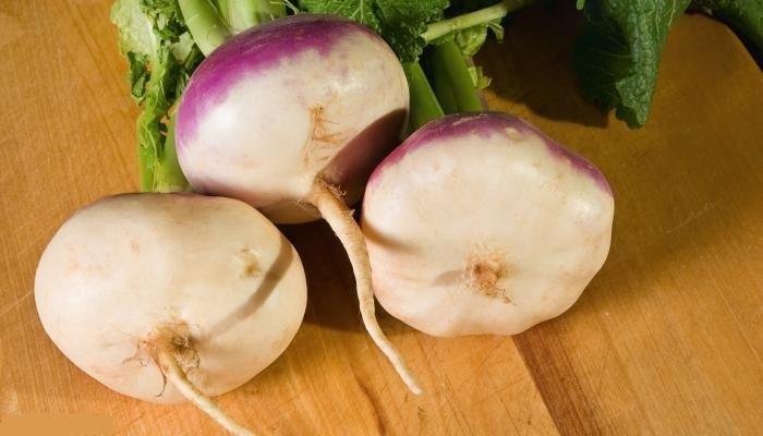 قیمت شلغم در میادین میوه و تره بار چقدر است؟