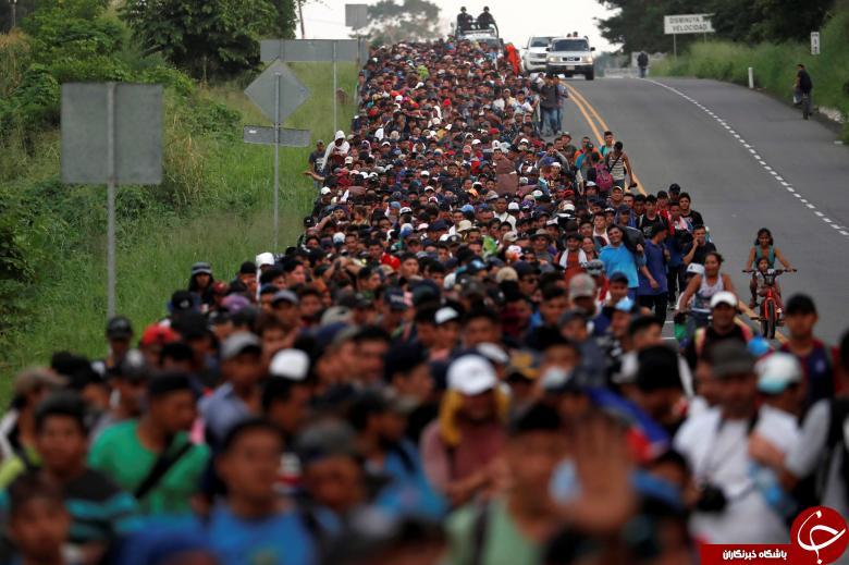 تصاویر هفته: از هجوم کاروان مهاجران آمریکای مرکزی به سمت آمریکا تا موزه قورباغهها در سوئیس