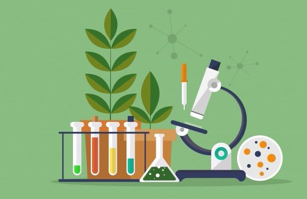 علم و ایمان؛ مهمترین مولفههای ایجاد قدرت/ حیرت غربیها از پیشرفتهای علمی کشور