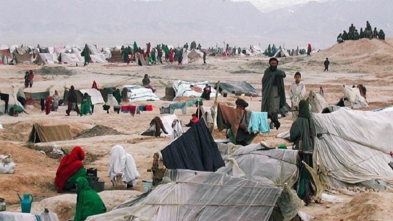 وزارت مهاجرین: زمستان امسال بیش از 800 هزار آواره داخلی را حمایت می کنیم