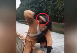 قدرتی عجیب که در دست های مرد چینی نهفته است! +فیلم
