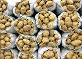 باشگاه خبرنگاران -کاهش30 درصدی تولید سیبزمینی در شهرستان چادگان