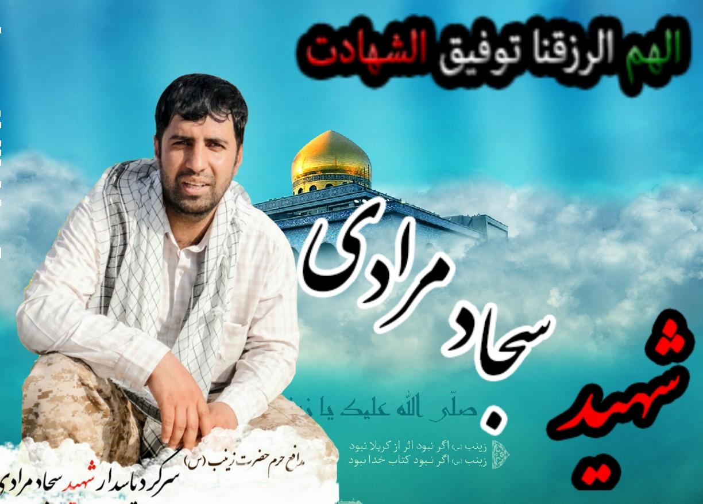 مدافع حرمی که روز شهادتش را پیشبینی کرد +تصاویر