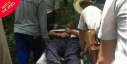 زنده ماندن خلبان پس از سقوط هواپیما در جنگل! +فیلم