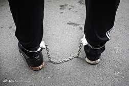 باشگاه خبرنگاران - طرح رعد ۱۸ پلیس پیشگیری پایتخت