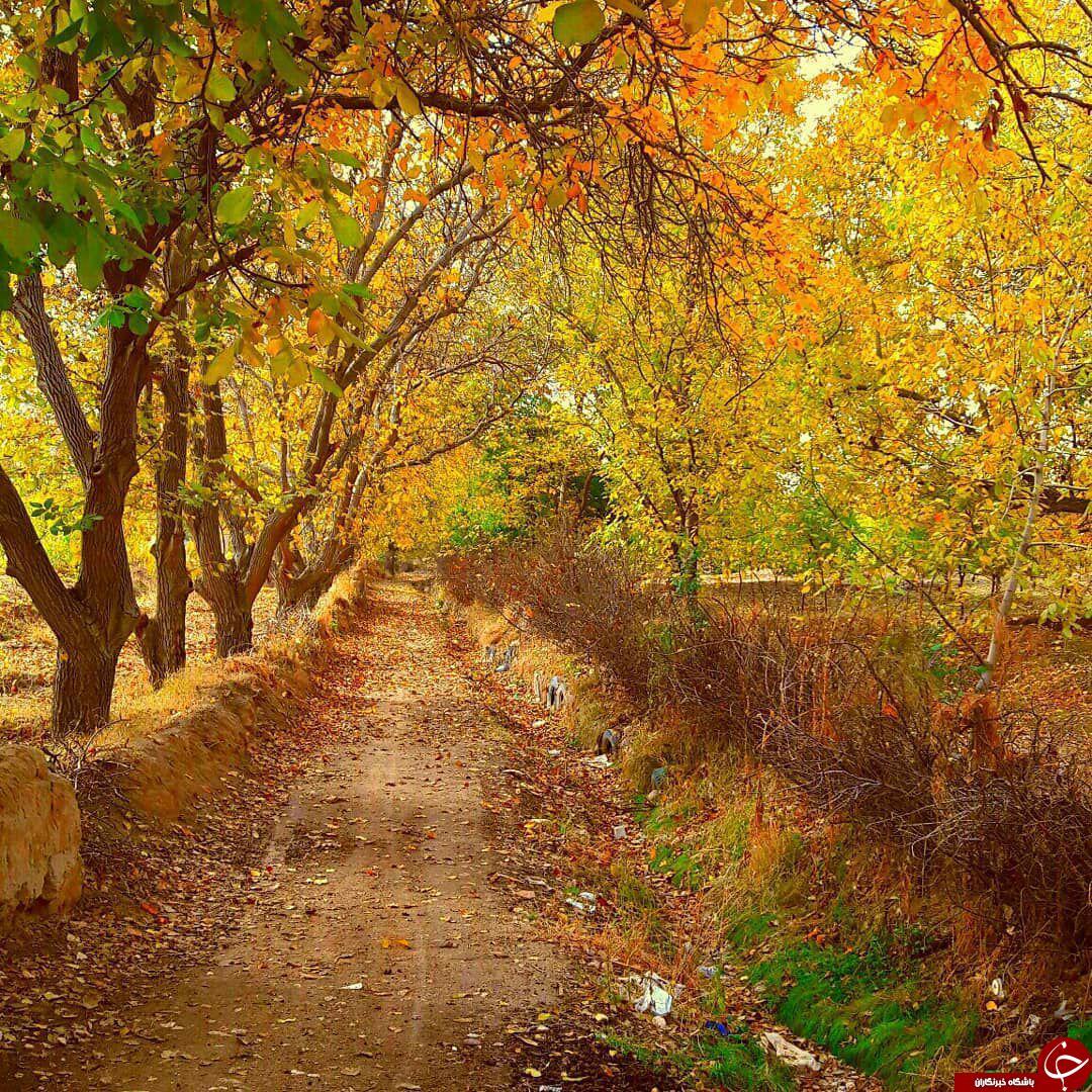 نمایی از طبیعت زیبا در «چهاربرج» + تصاویر