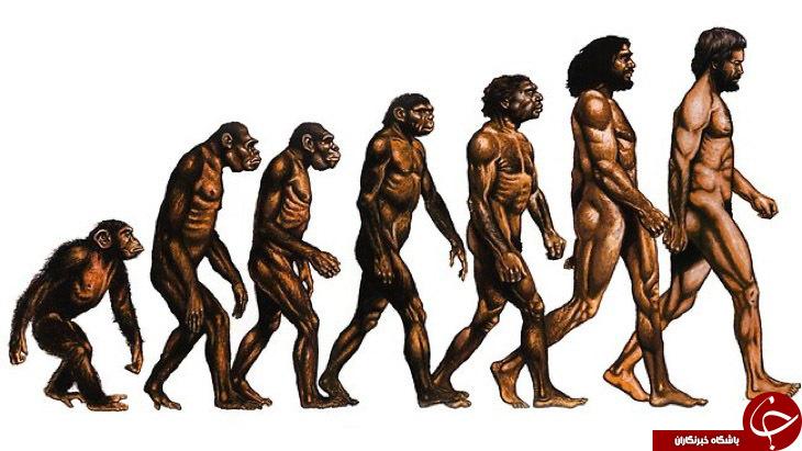 Image result for آیا ابر انسان یا موجودی برتر از انسان بوجود می آید؟