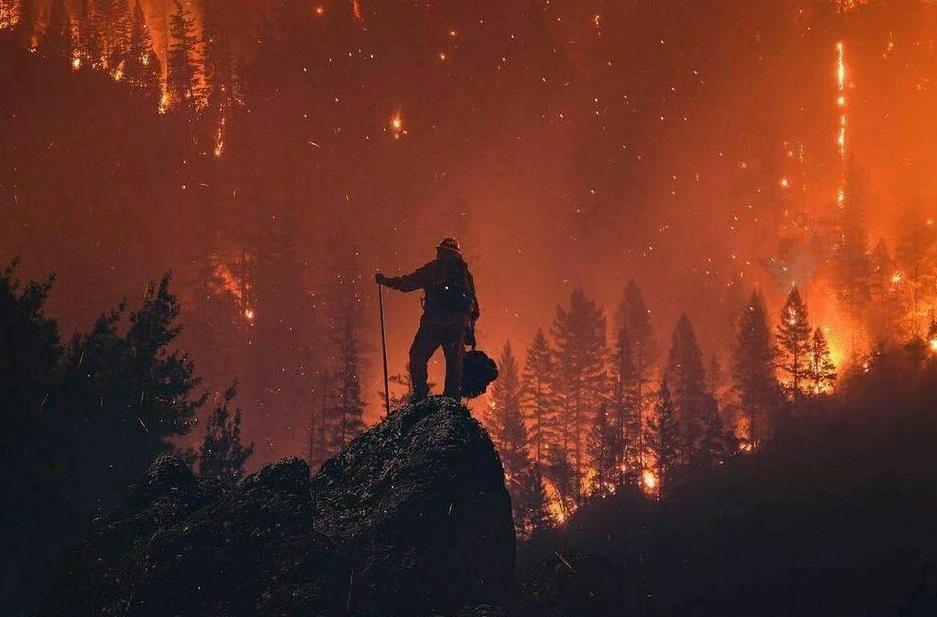 خانه کدام یک از بازیگران هالیوودی در آتش کالیفرنیا سوخته است؟ +تصاویر