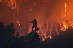 خانه کدام یک از بازیگران هالیوود در آتش کالیفرنیا سوخت؟ +تصاویر