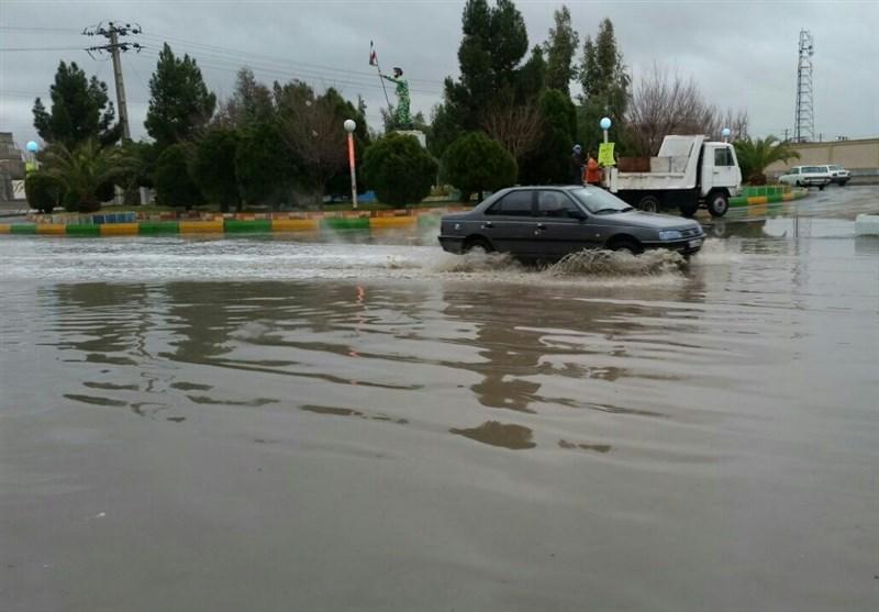 ترنم باران در مناطق مختلف استان بوشهر