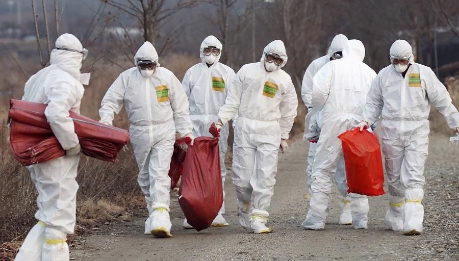 همهچیز درباره «قاتلان نامرئی» / مرگبارترین بیماریهای عفونی قرن اخیر را بشناسید+تصاویر