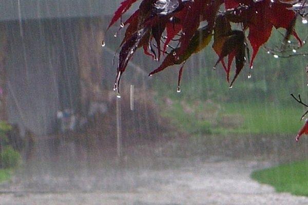 پیش بینی وضعیت بارندگی سال زراعی جاری کرمان