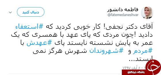 انتقاد عضو اصلاحطلب شورای شهر چهارم از ازدواج مجدد نجفی