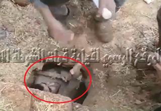 لحظه لو رفتن تروریست داعشی که زیر خاک پنهان شده بود+فیلم