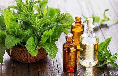 برای درمان آسم این روغن را فراموش نکنید/درمان خانگی خارش پوست سر با چای بابونه/درمان عفونت بدن با این میوه ترش/مقابله با انگلها به کمک سبزیجات