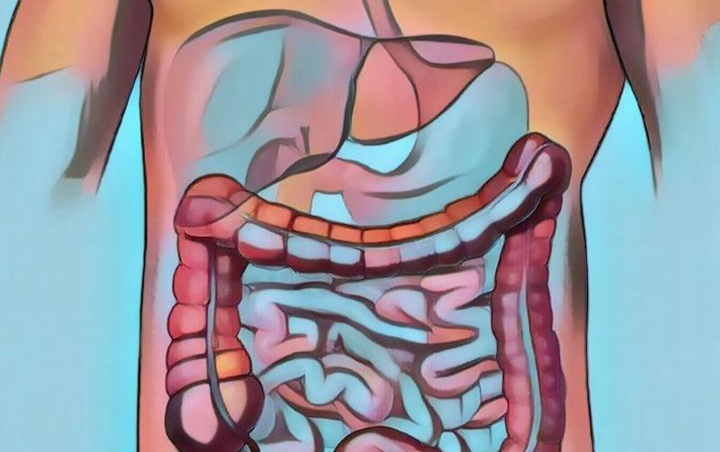 علت بروز دردهای عجیب شکمی/ از روده تحریک پذیر چه میدانید