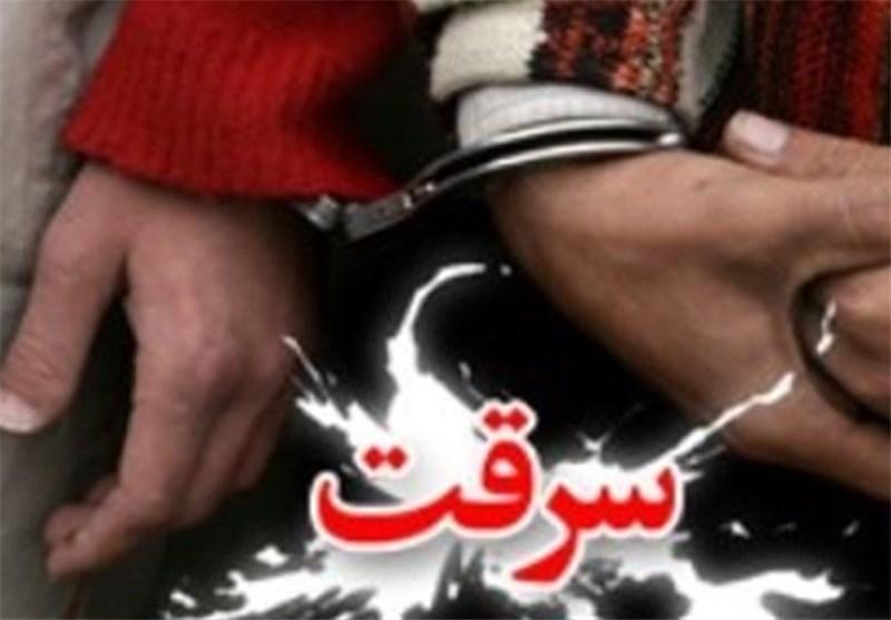 دستگیری ۲ سارق تلفن همراه و کشف ۷ فقره سرقت در عسلویه