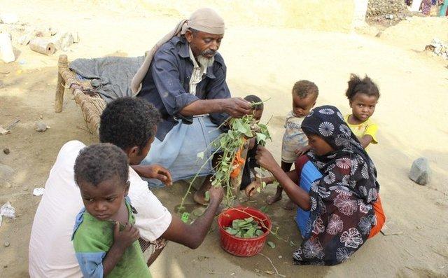 ۲۰ میلیون نفر در یمن از گرسنگی رنج میبرند