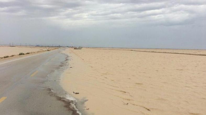 بازگشایی مسیر بوشهر - گناوه