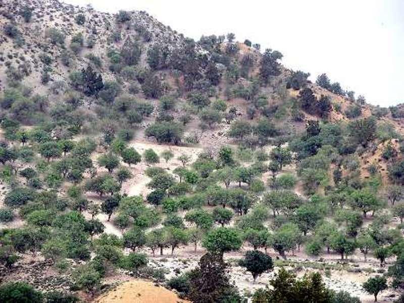کرمان سومین استان سیل خیز کشور