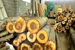 پلمب  سه کارگاه چوب سرخدار در گرگان