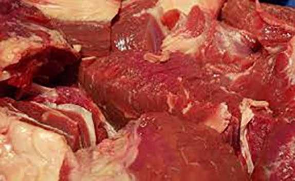 باشگاه خبرنگاران - توزیع ۸ تن گوشت قرمز منجمد در شهرستان مهاباد