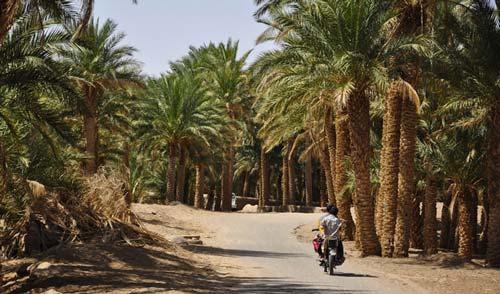 ۱۰ پیشنهاد برای کویرگردی در ایران