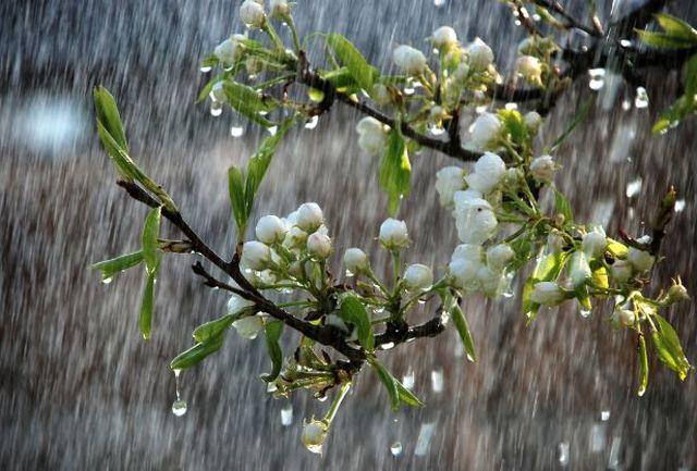 افزایش بیش از دو برابری بارشها در فارس/سپیدان رکورد دار بیشترین بارش