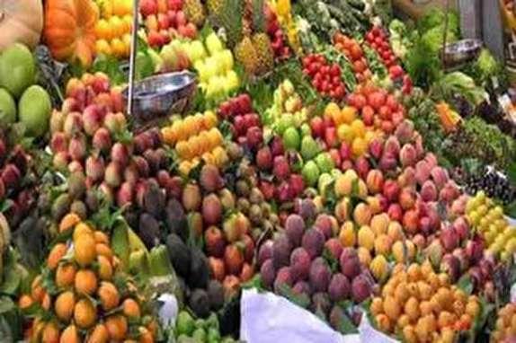 باشگاه خبرنگاران - تولید بیش از ۳۰ درصد میوه آذربایجان شرقی درشهرستان مراغه