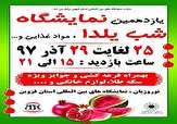 باشگاه خبرنگاران -برپایی نمایشگاه شب یلدا در قزوین از ۲۵ آذر