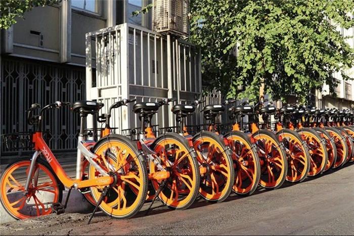 حل آلوگی هوای کلانشهرها با دوچرخهسواری/دغدغههای دوچرخهسواران چیست؟