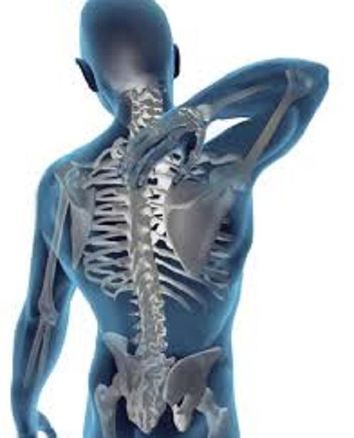 از صفر تا صد بیماریهای ناشی از کمر درد/اسپوندیلوز گردن چیست؟