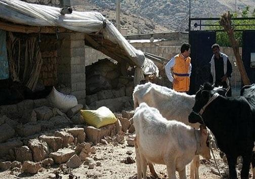 آخرین جزییات زلزله ۶.۴ ریشتری استان کرمانشاه/ آب، برق و گاز وصل است/ برآورد خسارات تا ظهر امروز