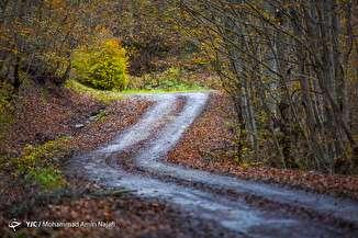 طبیعت پاییزی مازیچال - مازندران
