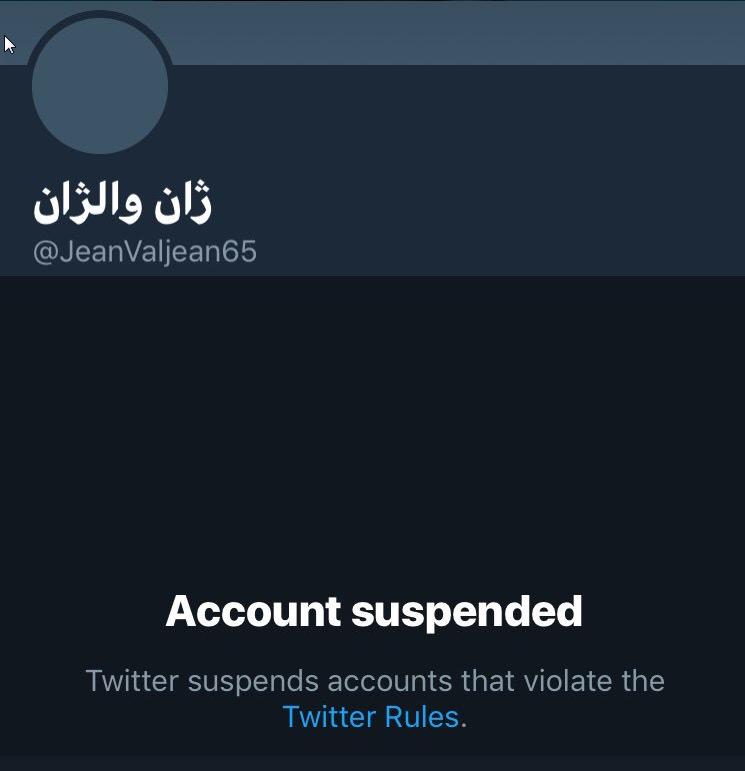 توییتر باز هم اکانت ها انقلابی را مسدود کرد +تصاویر