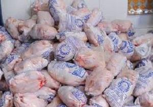 بیش از یک تن مرغ قاچاق در قم توقیف شد