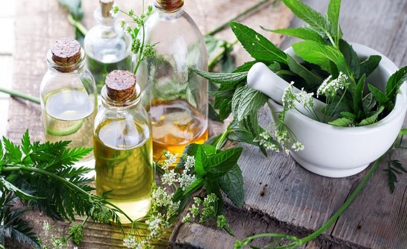 رفع تهوع در سفر با یک شربت گیاهی/ مصرف این نوشیدنی شما را از آفت دهان نجات میدهد
