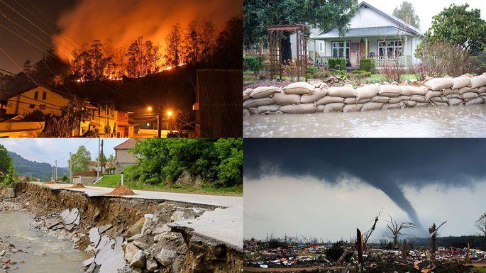 نهادهای امدادی یا سلبریتیها؛ کدامیک را برای کمک رسانی در حوادث انتخاب کنیم؟