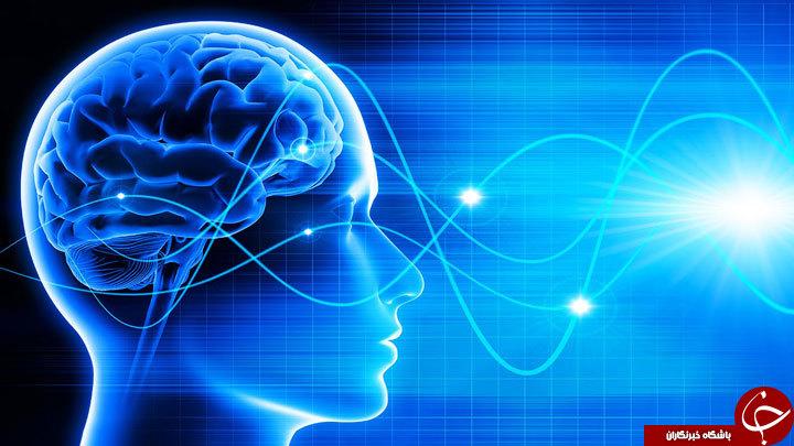 توصیههایی تغذیهای که زندگی شما را متحول خواهد کرد! / چطور با کمک ذهن آگاهی لاغر شویم؟!