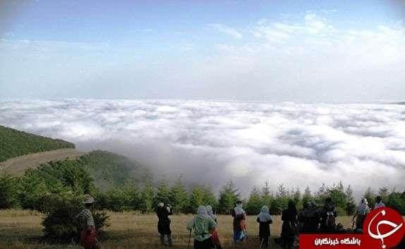 باشگاه خبرنگاران - سفر به شاهرود در نوروز را تجربه کنیم/ در نگین کویر ایران جنگلی از ابر را لمس کنید